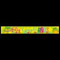 Letrero de cumpleaños Banner 12 (Pequeño)